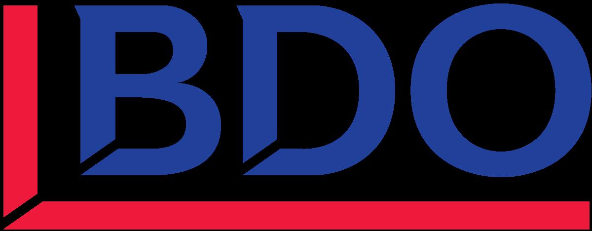 BDO Partner